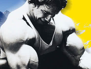 Arnie during a biceps workout